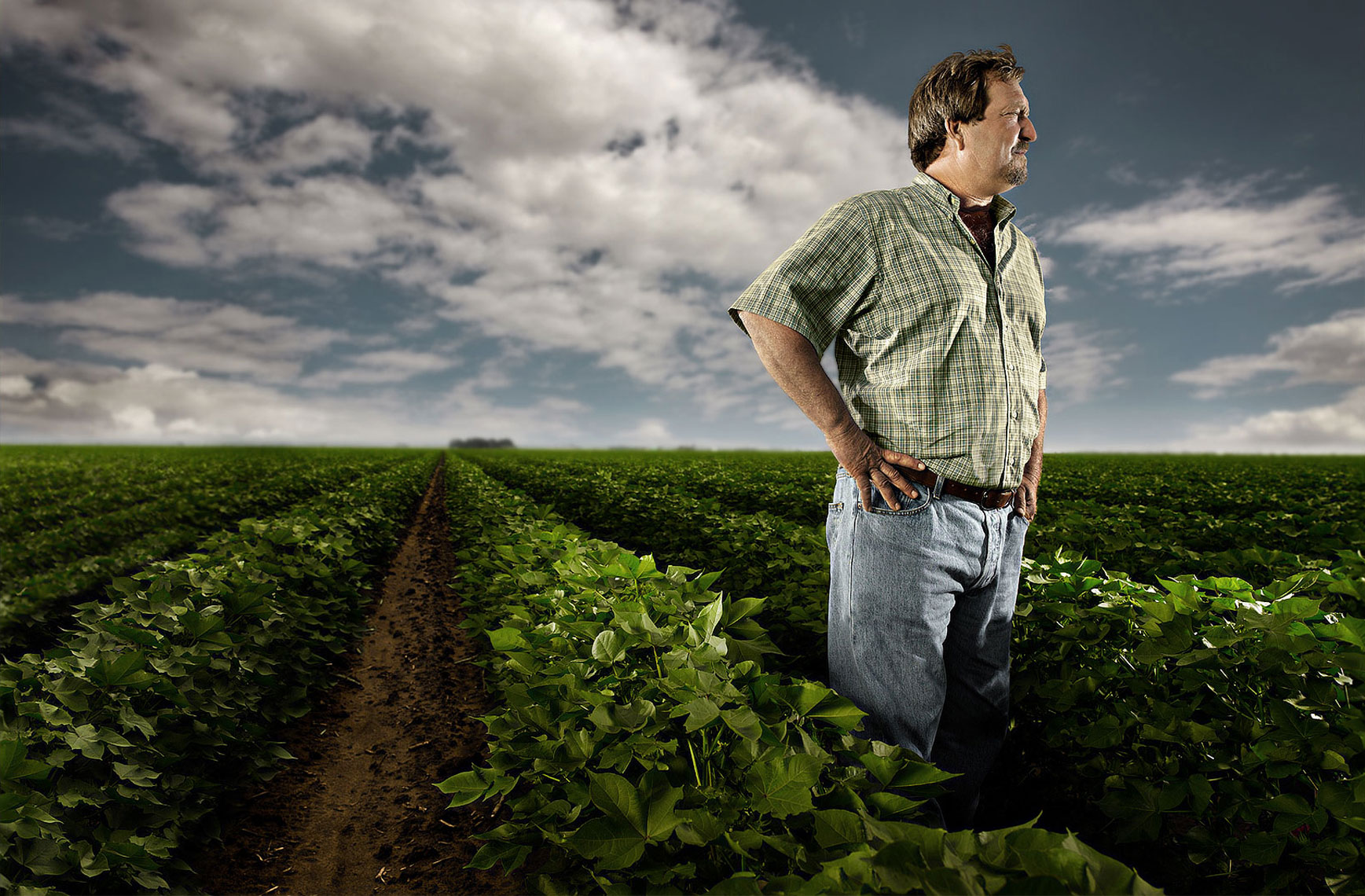 Cotton grower on his farm in Oklahoma
