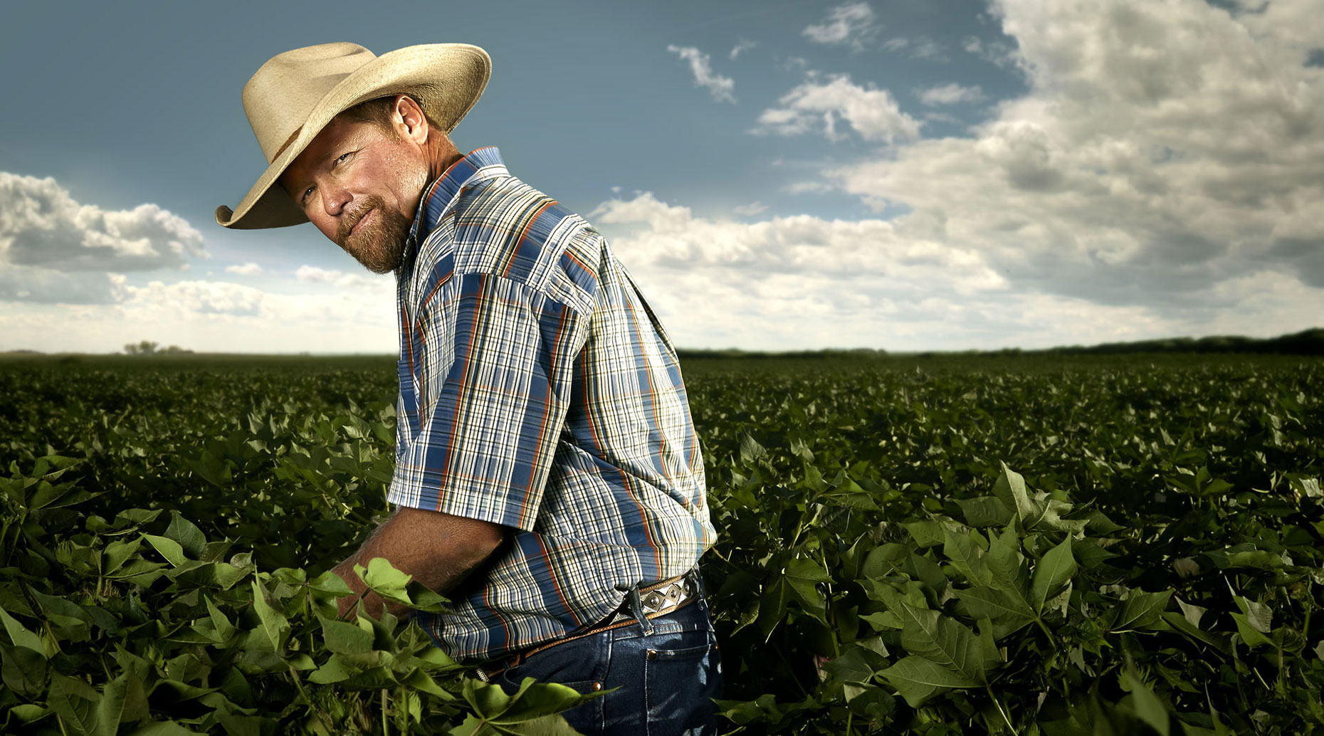Farm hand in a cotton field in West Texas
