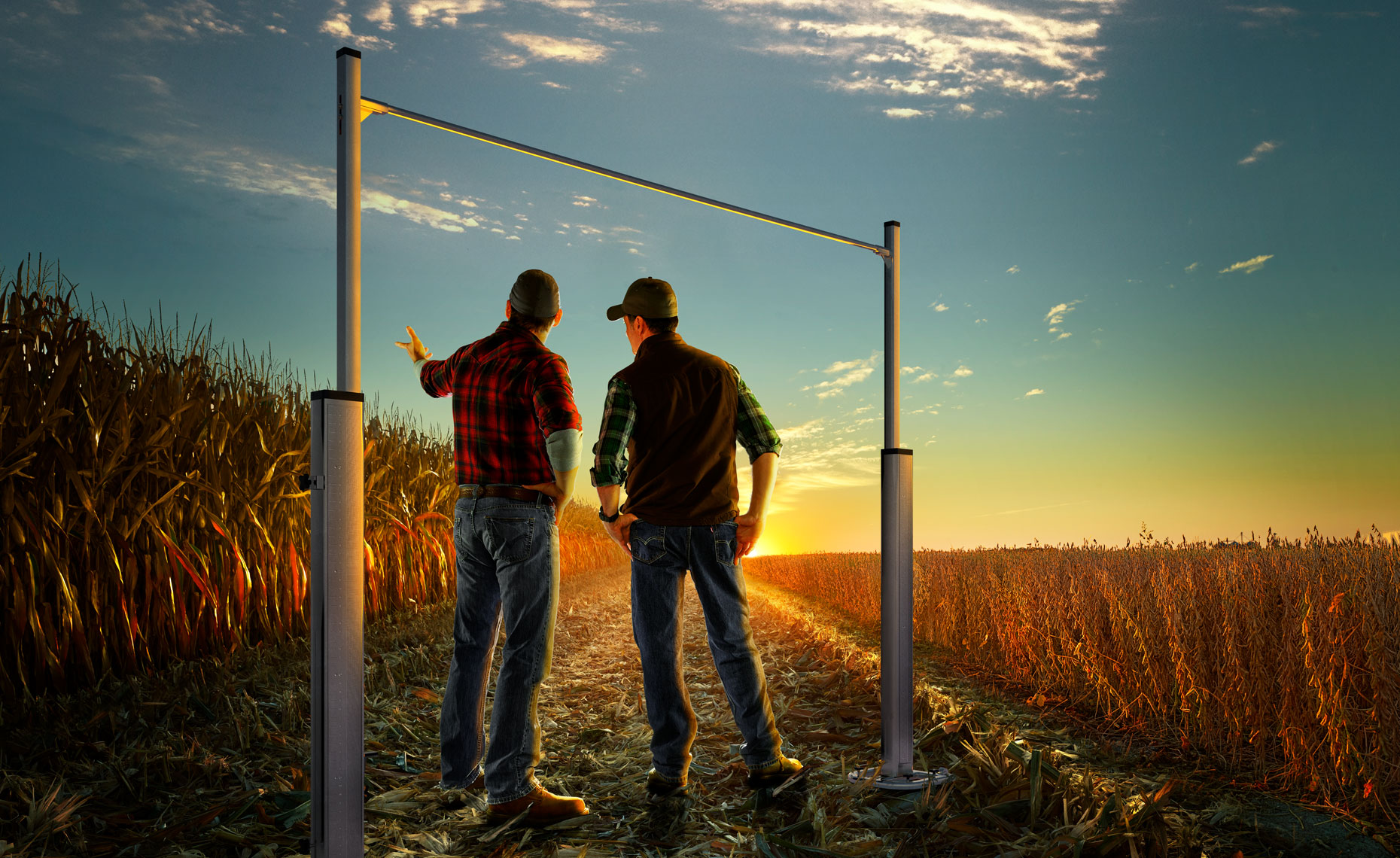 Corn and soybean farmers viewing  their crop field at sunrise.