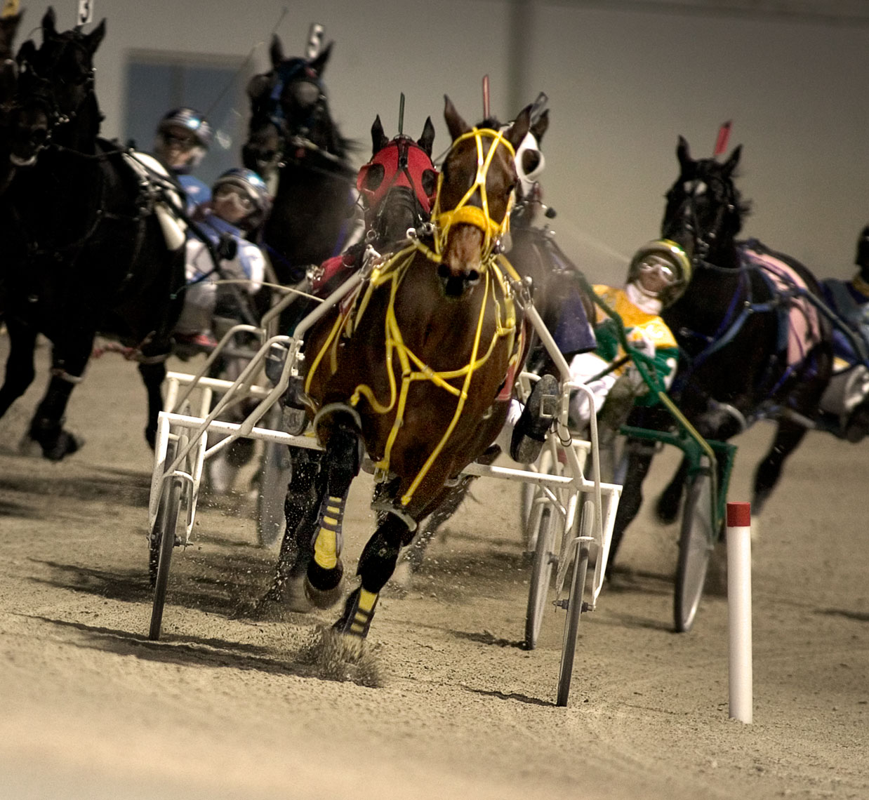 Harness Racing_008| Robert Randall Advertising Photographer, Commercial Photographer, CGI, Portrait, and Lifestyle Photography
